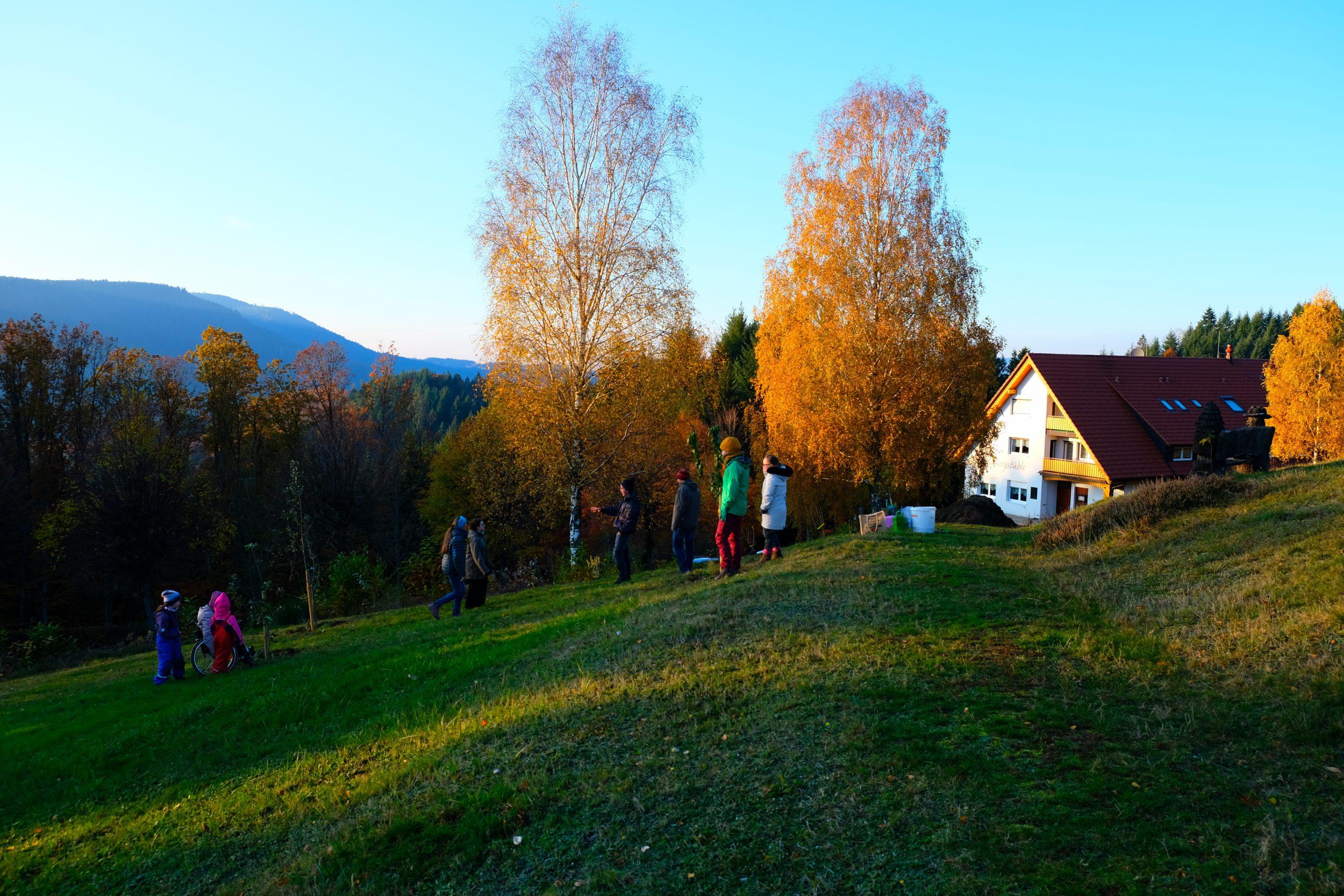 Obstbäume und -sträucher für den Braunberg
