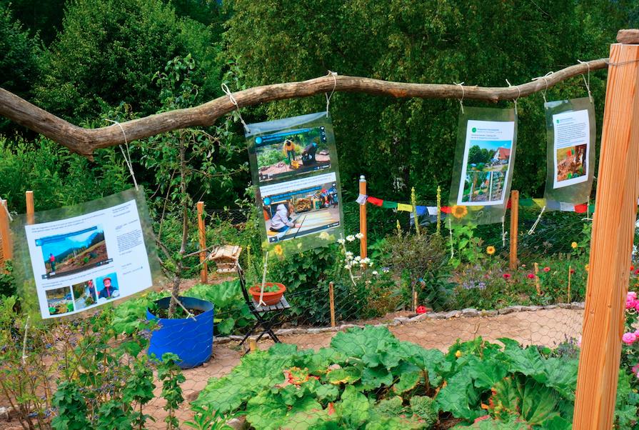 Mensch im Garten Teil 1 // Endspurt Gartenprojekt