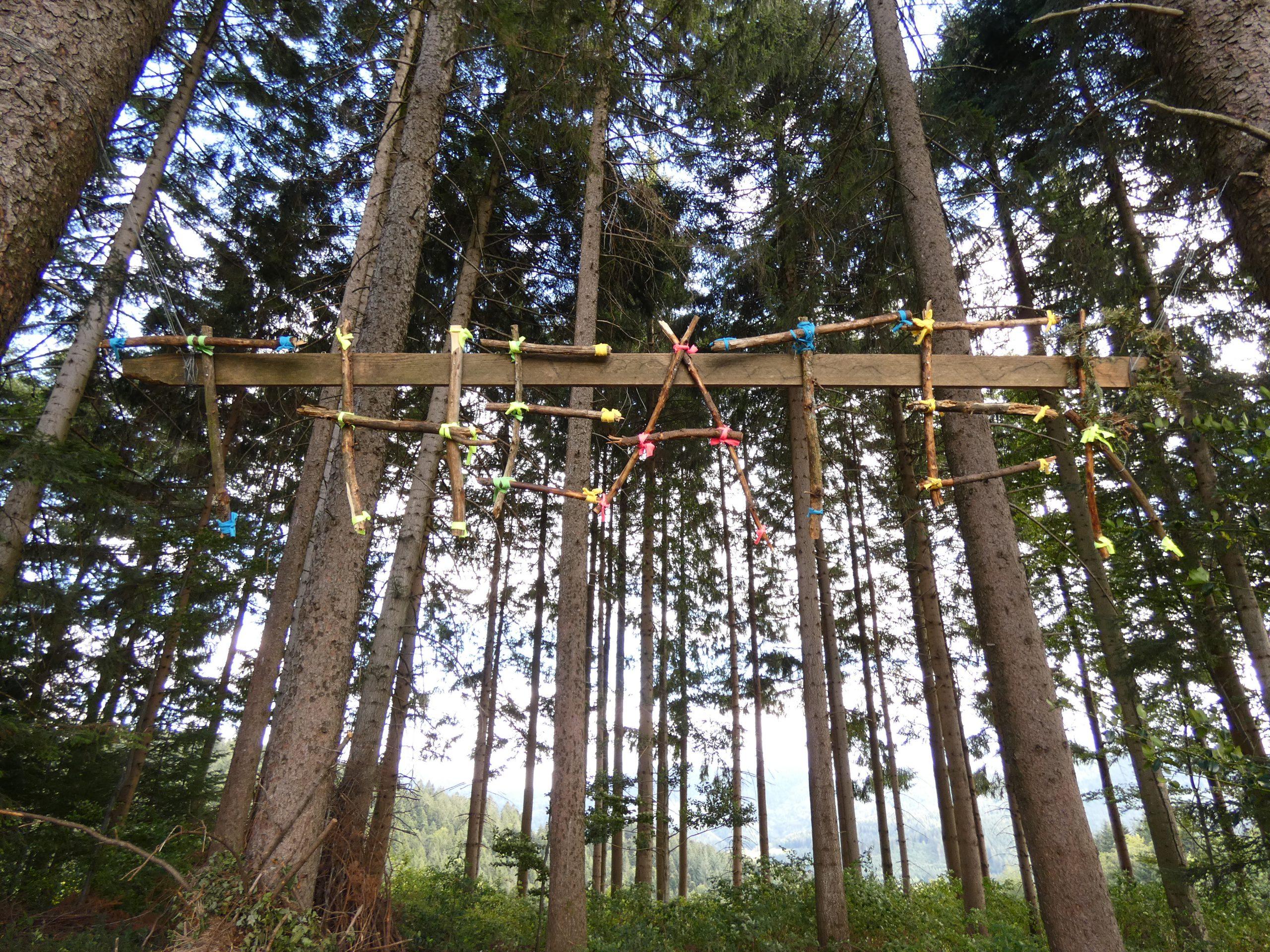 Unser Waldtheater und der Geruch von Nadelwäldern