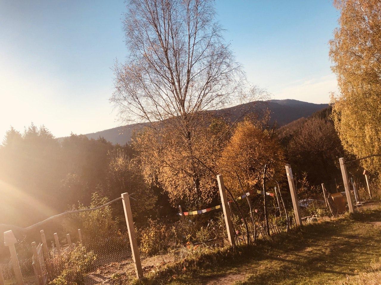 Die Kraft der Natur, Yoga und Meditation – das letzte offizielle Wochenende des Braunberg-Projekts